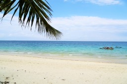 Zanzibari Dreams