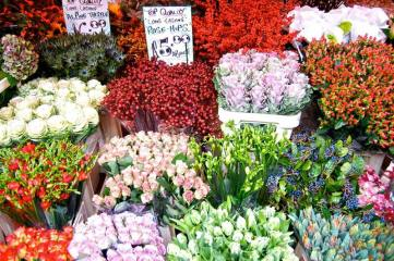 columbia-market-flowers